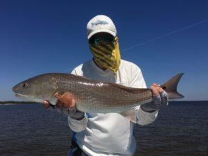 Nice redfish caught on fly, Boca Grande , FL.