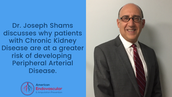 Dr. Joseph Shams discusses why patients with Chronic Kidney Disease are at a greater risk of developing Peripheral Arterial Disease.