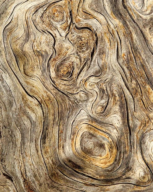 wood5