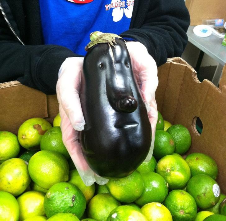 23 стряскащи плодове и зеленчуци, които изглежда са живи