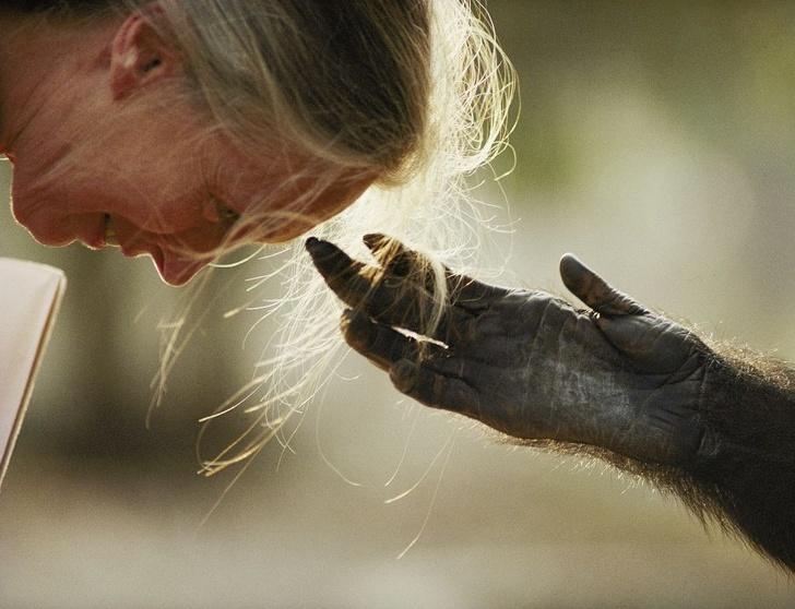 """25 разбъркващи снимки в """"National Geographic"""", които правят времето да спре"""