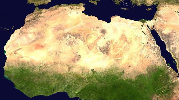 """Хората в Африка изграждат """"Голямата зелена стена"""", направена от засадени дървета, за да помогнат на планетата да оцелее най-лошото"""