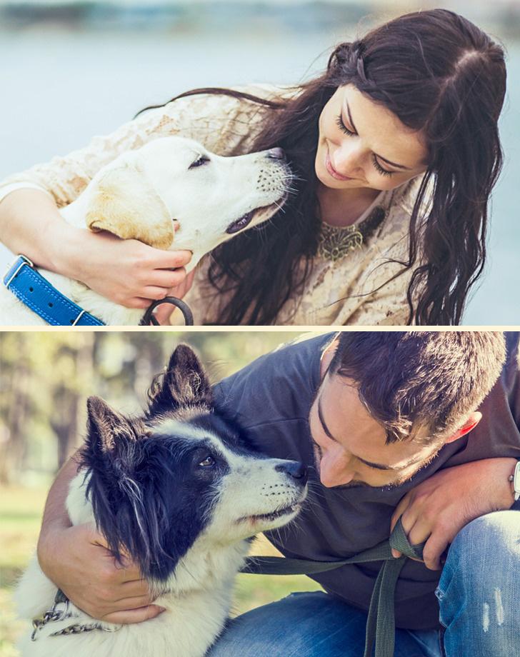7 неочаквани неща кучетата могат да миришат