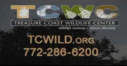 Feb TCWC 2