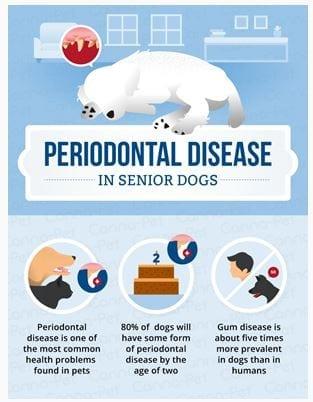 Feb Peridonatal