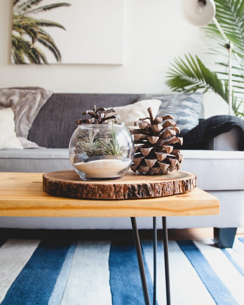 Detail decor with glass vase with sand and a pine cone next to it, palm tree plan in the background and a sofa