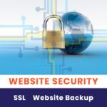 Harlem-Boy-Media-Design-Website-Resources-Services-Security-2