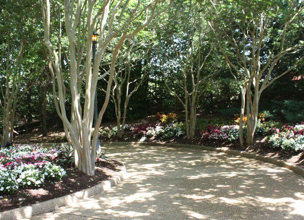 Landscaped Path at Busch Gardens Williamsburg