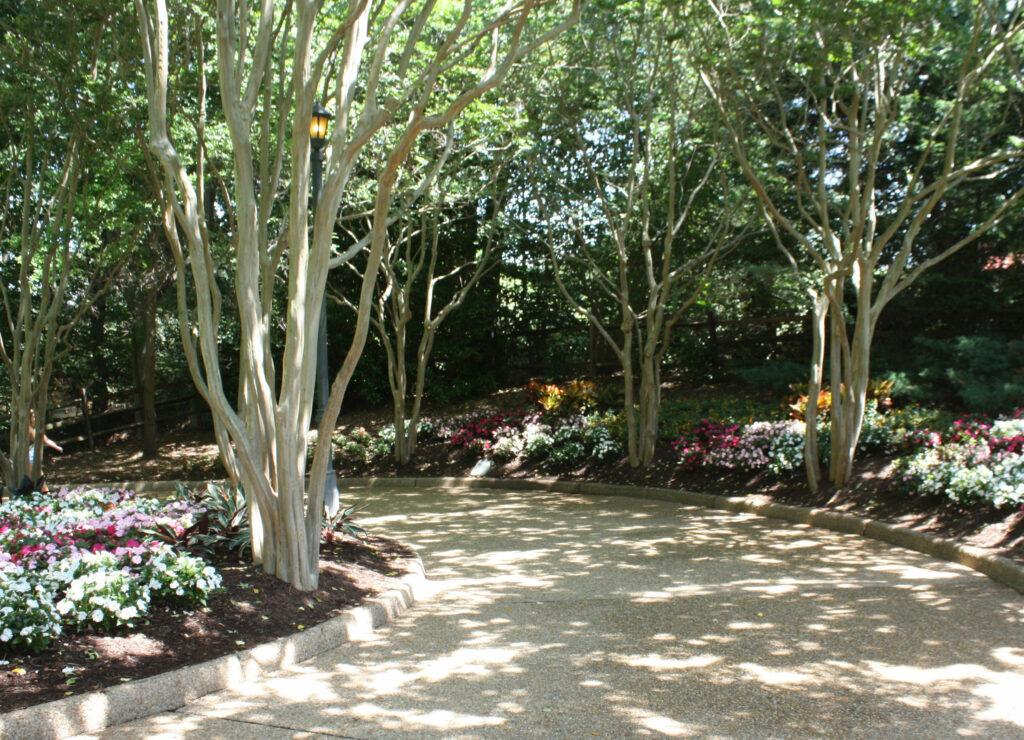 Landscaped Path at Busch Gardens Williamsburg
