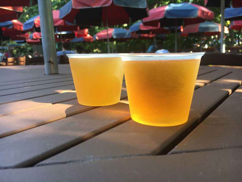 Beer Samples at Bier Fest Busch Gardens Williamsburg