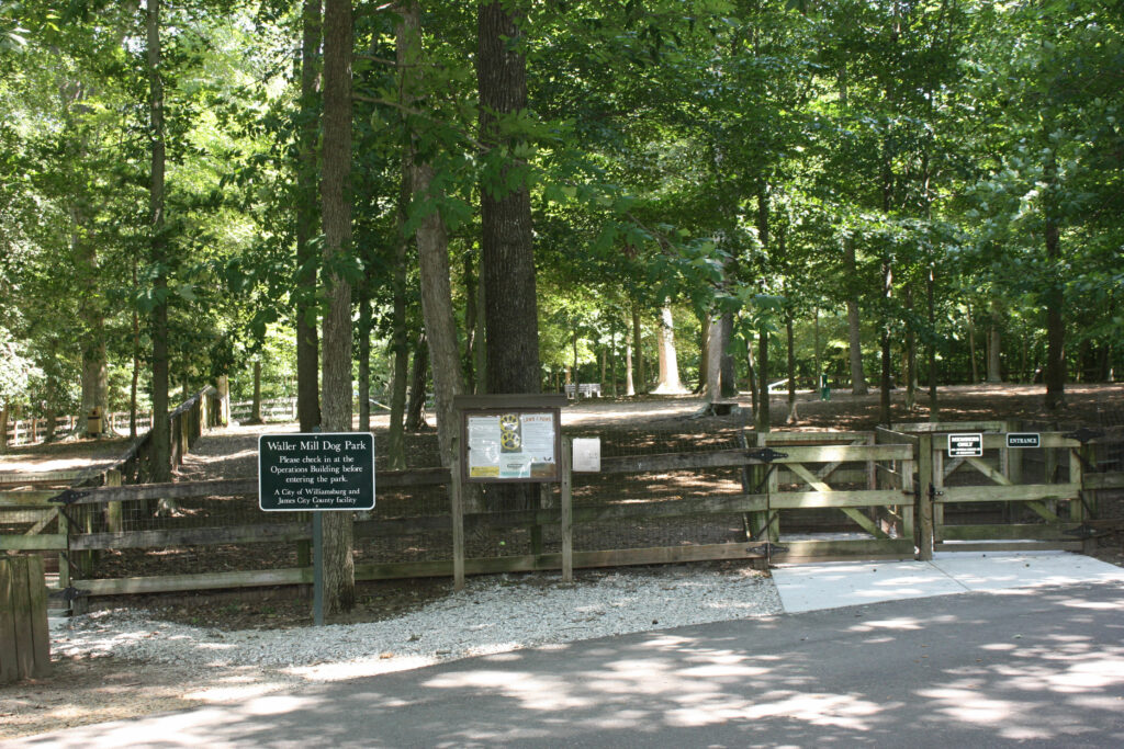 Large Dog Park at Waller Mill Park