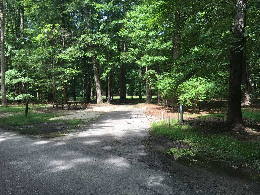 Campsite at Newport News Park Campground
