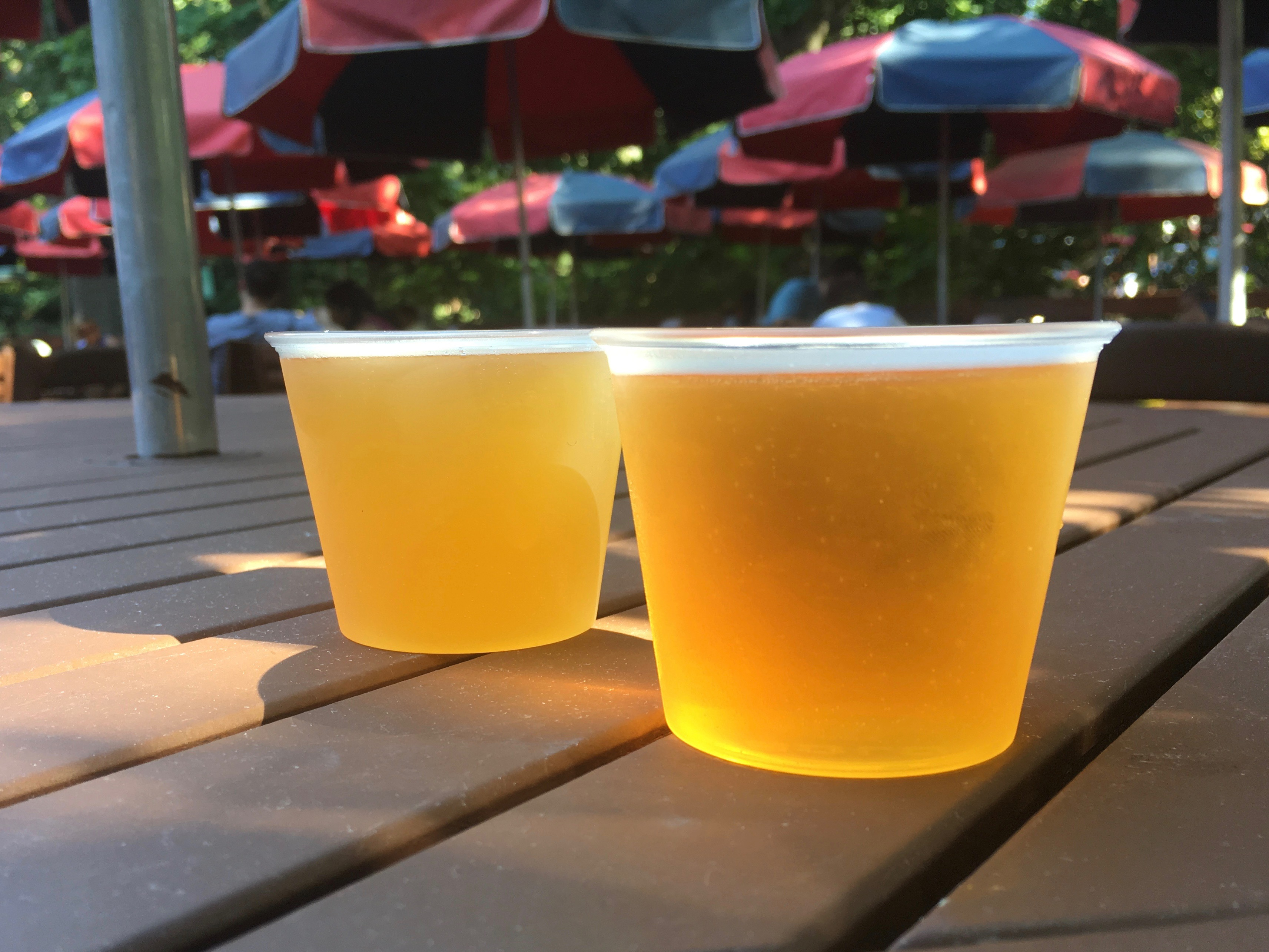 Busch Gardens Williamsburg Bier Fest