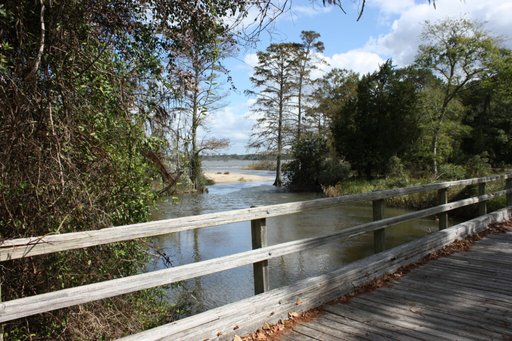chippokes plantation state park hiking trail
