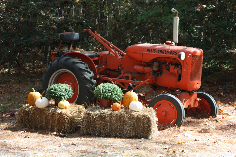 Antique Tractor at Chippokes Plantation State Park