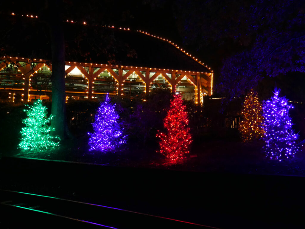 Busch Gardens Williamsburg Christmas Town Multi Color Lights