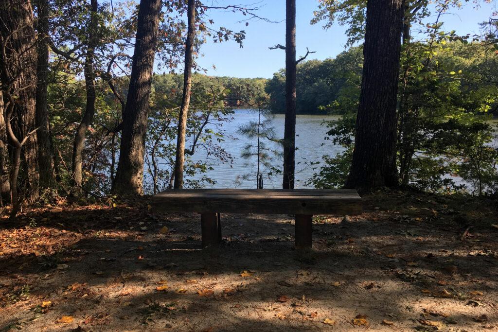 Noland Trail Newport News VA Bench Lake View