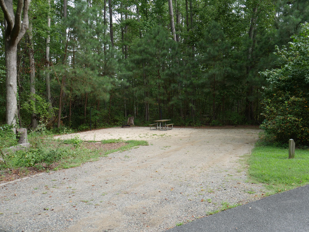 Belle Isle State Park Campground Back In Site
