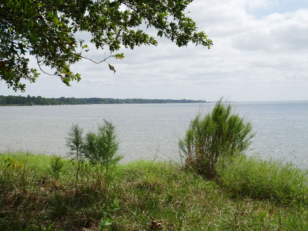 View of the Rappahannock River From the Belle Isle Picnic Area