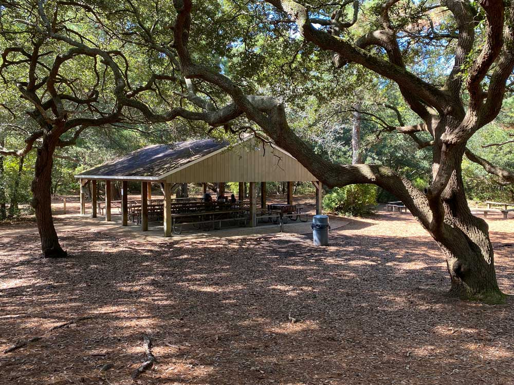 First Landing Picnic Shelter