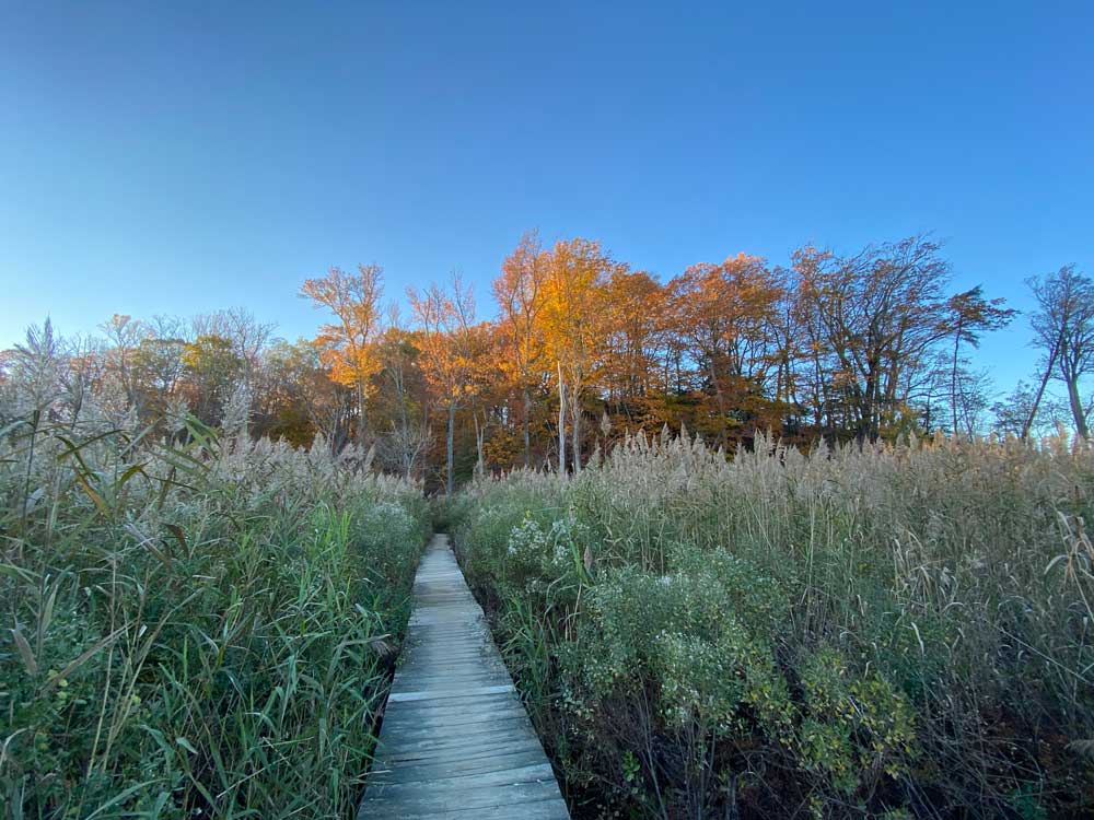 Westmoreland State Park Hiking Trail