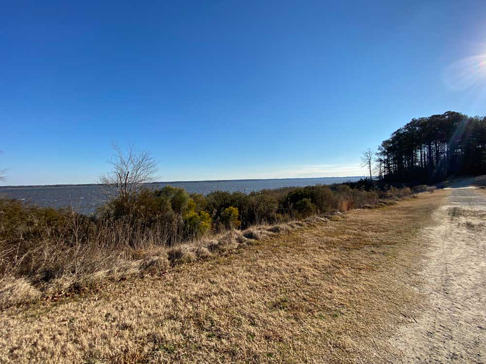 Hiking Trail at York River State Park