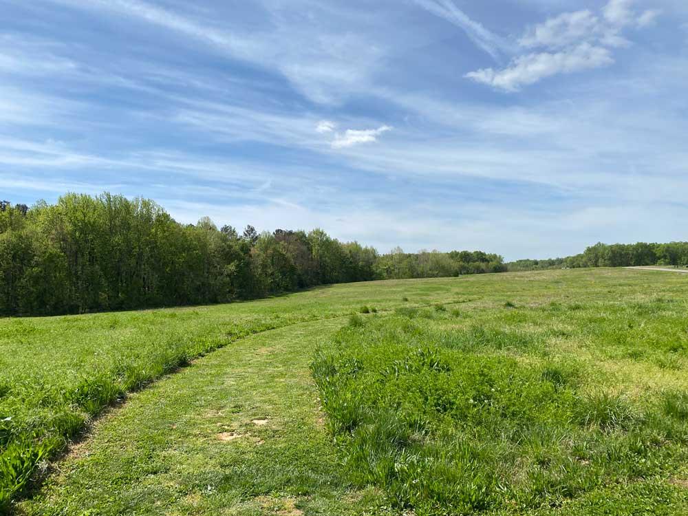 Powhatan State Park Meadow Hiking