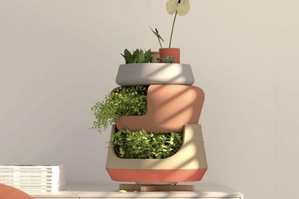 Design para plantas: dois vasos criados para facilitar o cultivo dentro de casa