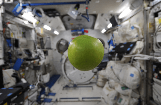 An apple On ISS in a state of weightless