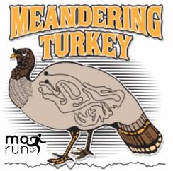 Meandering Turkey