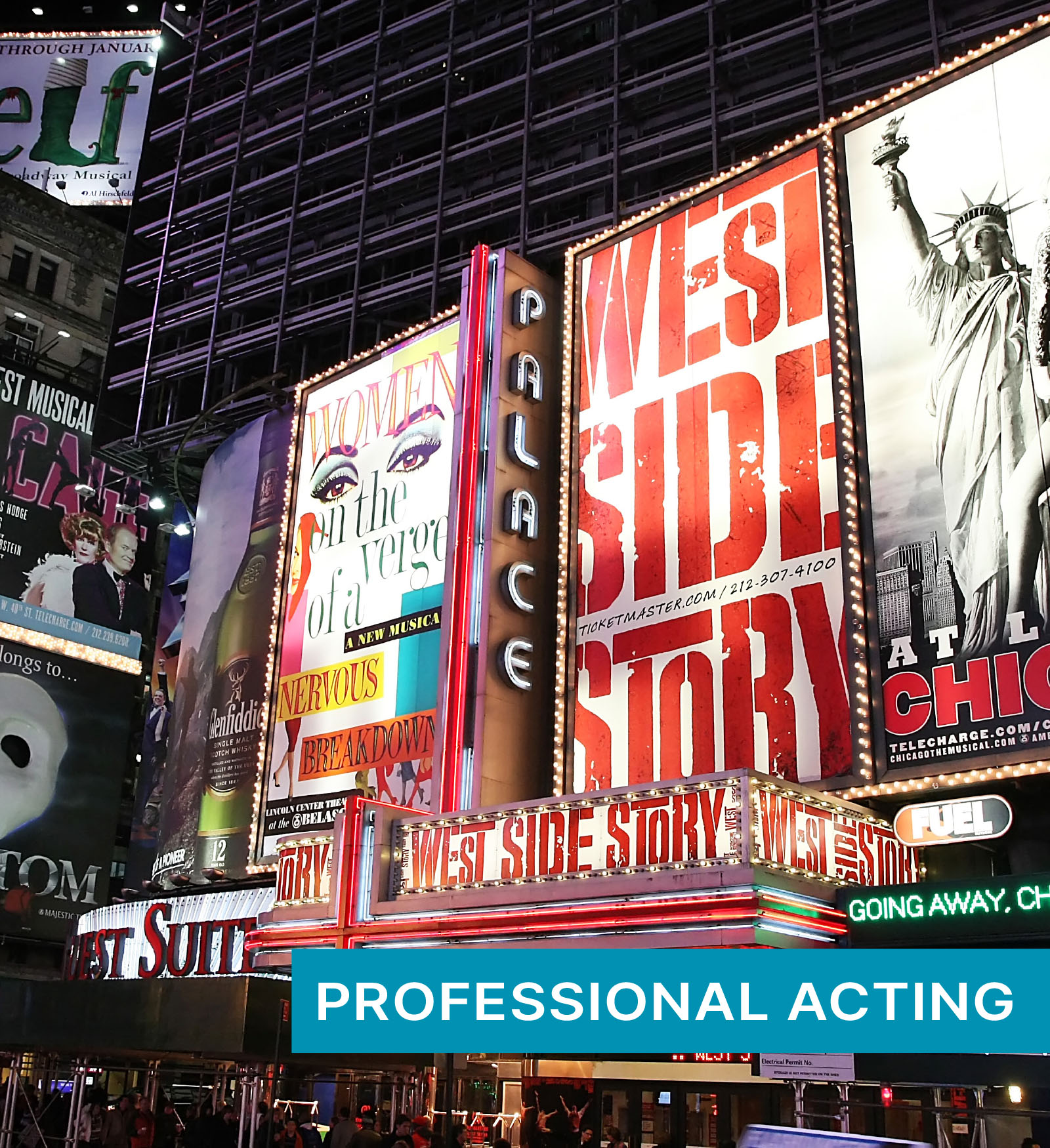 professional acting coach