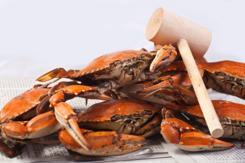crab and mallet