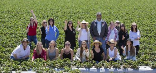 The group enjoying fresh picked strawberries (I'm on the left!!)