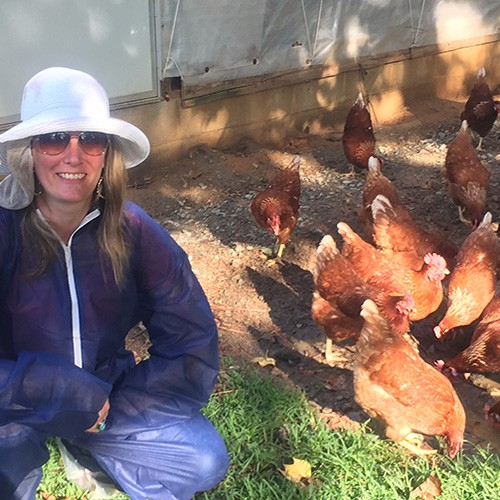 Hanging out with the hens