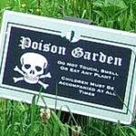 Castle Blarney's Poison Garden