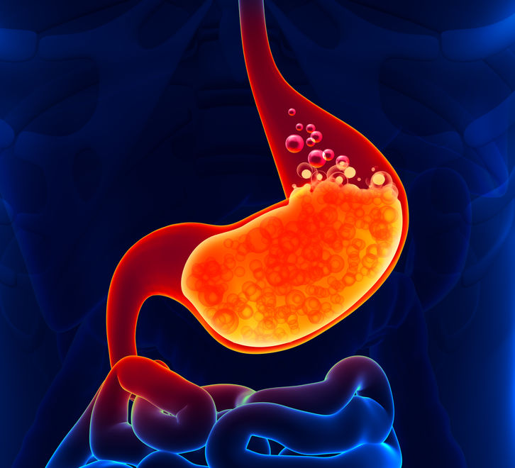 Digestive Enzymes and Gut Health