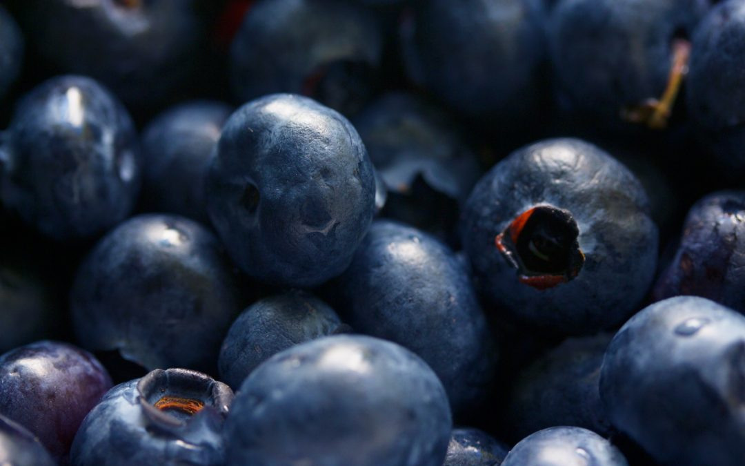 Foods That Can Help Boost Your Immune System