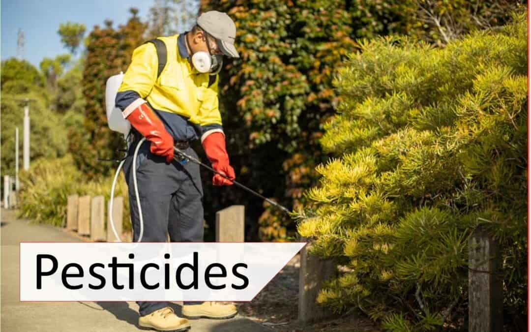 Common pesticides and treatment guide