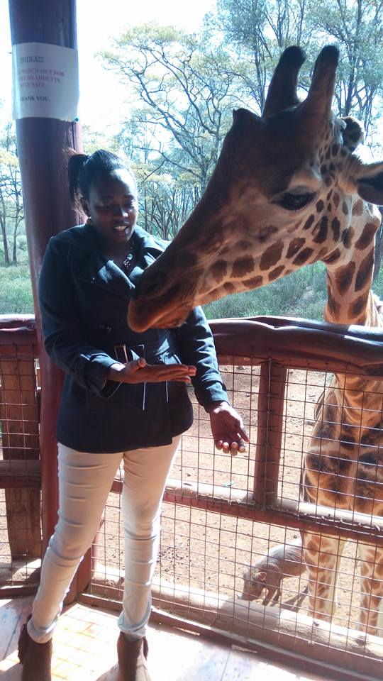 Things to do in Nairobi city– Moments with Giraffes..