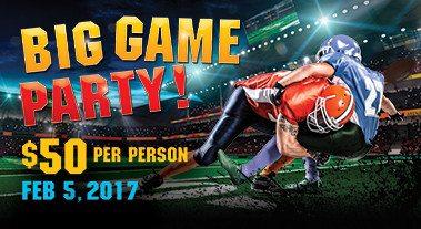 Big Game Superbowl Party