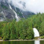majestic waterfalls everywhere