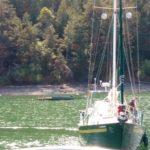 Gypsy Soul departing Stuart Island