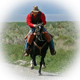 Horses-Horseback Riding- Country Living