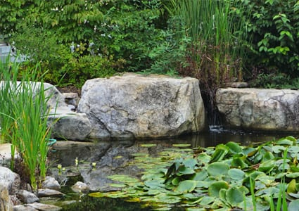Boulders for water gardens