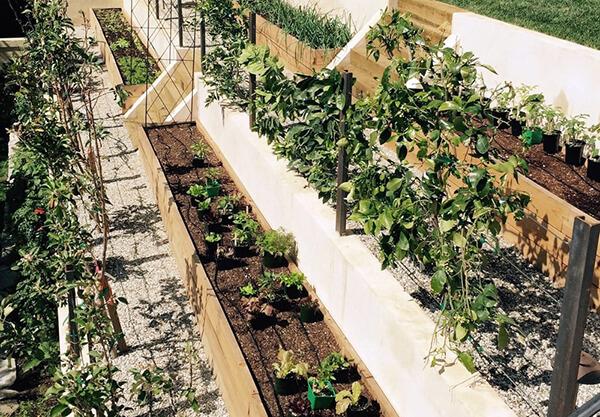 custom garden installations by MinifarmBox