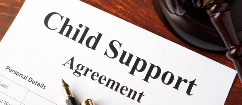 Savannah Child Support determined