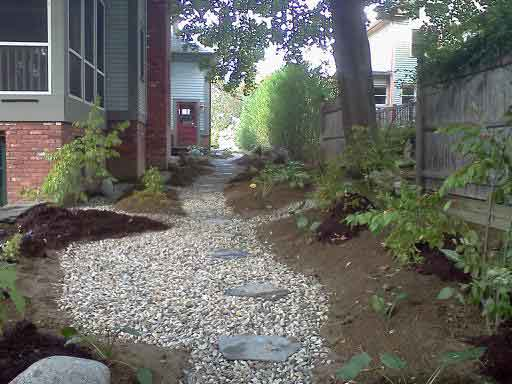 The rain garden stepping stone path, planted and ready for mulch