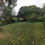 The front yard, fourth year