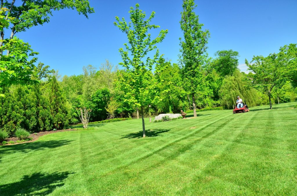 Landscapers in Oneonta NY