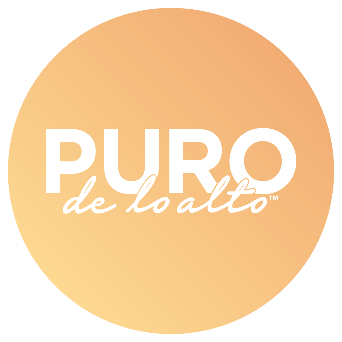 PURO_GRADIENT_LOGO_1[16]